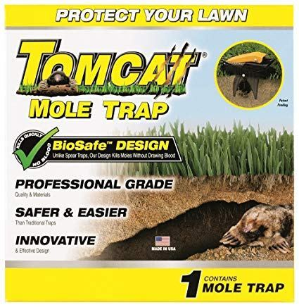 Best Mole Traps Reviewed